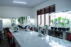 Laboratório da universidade vazio. Uma bancada ao centro e sobre ela três microscópios. Também se vê pequenos vasos e plantas para experiências. Ao lado direito uma janela.